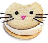 archi-cookie